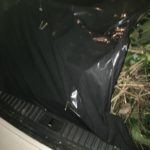 There are three bags of sticks and limbs and leaves in the car's trunk.