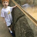 He is tall enough to see the Meerkats at the zoo, without having to be held up by a grownup.